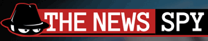 beskjæres-the-news-spy-logo